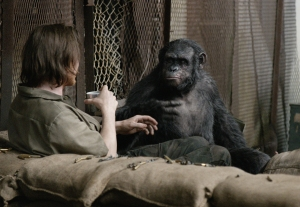 A-human-shares-a-drink-with-an-ape